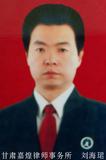 副会长 刘海珺